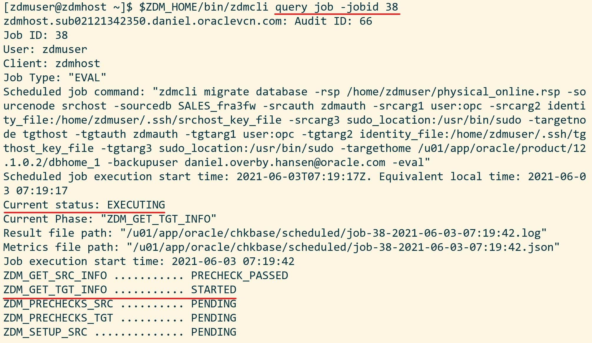 Output from zdmcli query job command